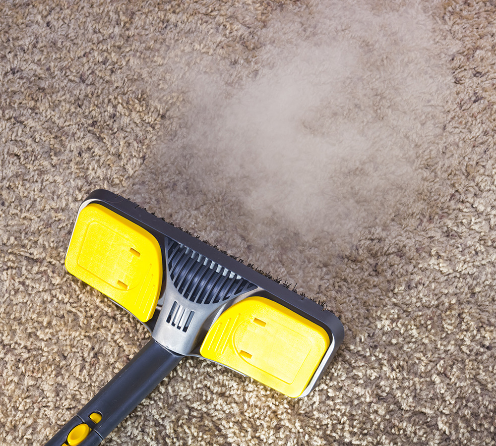 Hire A Carpet Cleaner Tulse Hill Steam Cleaning Carpets Se24